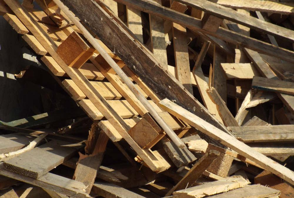 The Problem of Wood Waste: Where does it come from?