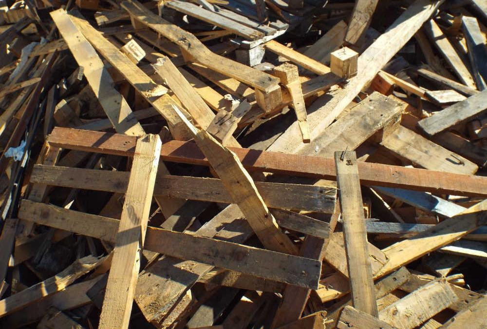 What a Waste: Where Does Wood Waste Come From?