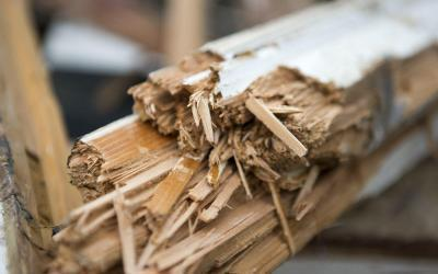 How Carpentry and Joinery Businesses Should Recycle Wood Waste