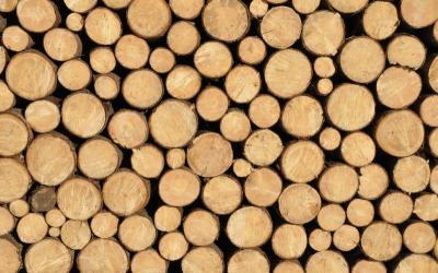 Biomass Energy from Wood Waste Helps Power the Country